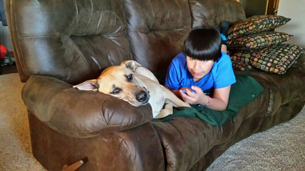 Sioux City Now - Noah's Hope Animal Rescue - The Adoption Process