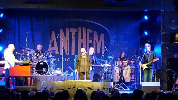 The Animals at the Hard Rock Hotel & Casino