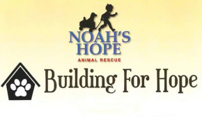 Sioux City Now - Noah's Hope Animal Rescue - Building for Hope