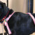 Sioux City Now - Noah's Hope Animal Rescue - Pet of the Week - Daisey